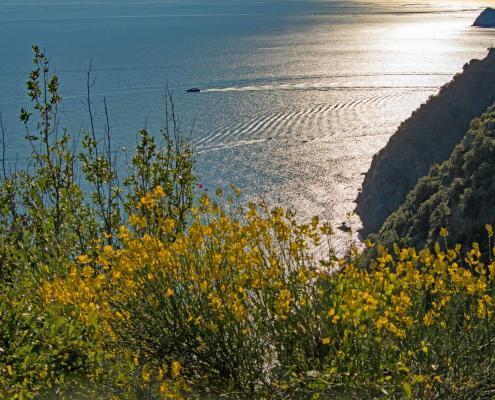 Ligurian Coastal Cinque Terre