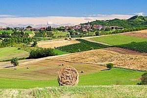 Gourmetreise Piemont für Selbstfahrer