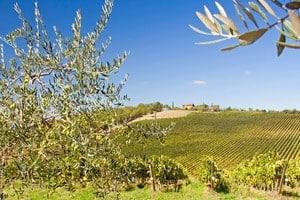 Toskana sehen und erleben